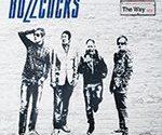 Биография группы Buzzcocks - панк-рок коллектив из Болтона (фото)