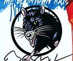Биография группы The Boomtown Rats - ирландский рок-коллектив (фото)