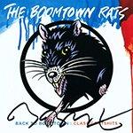 Биография группы The Boomtown Rats: ирландский рок-коллектив