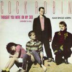 Биография Cock Robin: американская поп-рок-группа из 80-х