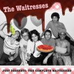 Биография The Waitresses - экспериментальная пост-панк группа из США (фото)