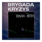 Биография Brygada Kryzys: польская пост-панк-рок-группа из 80-х