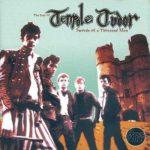 Биография Tenpole Tudor: британский панк-проект