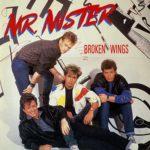 Биография Mr. Mister: американская поп-группа из 80-х