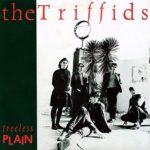 Биография The Triffids: австралийская рок-группа из 80-х