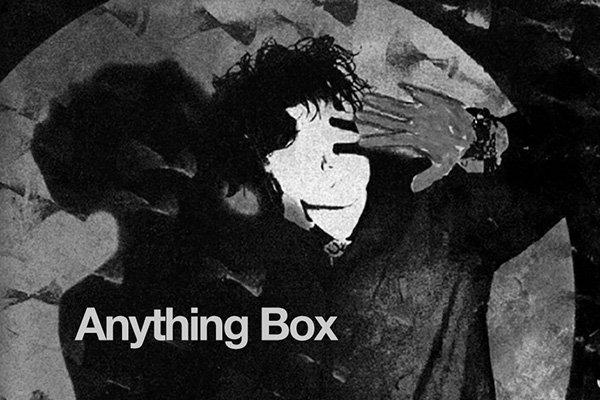 Создание второго LP и дальнейшее развитие Anything Box
